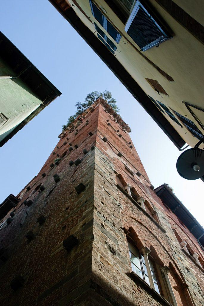 Dębowa wieża w Lukce
