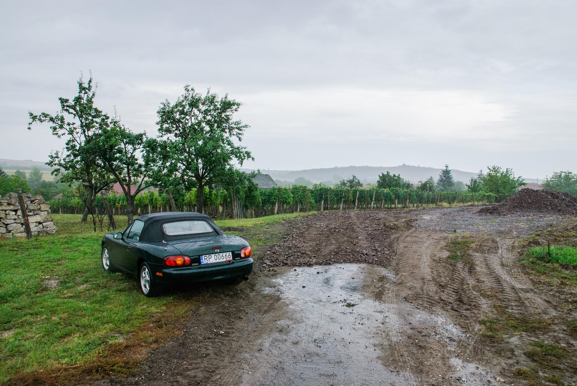 Winnice w Hercegkút