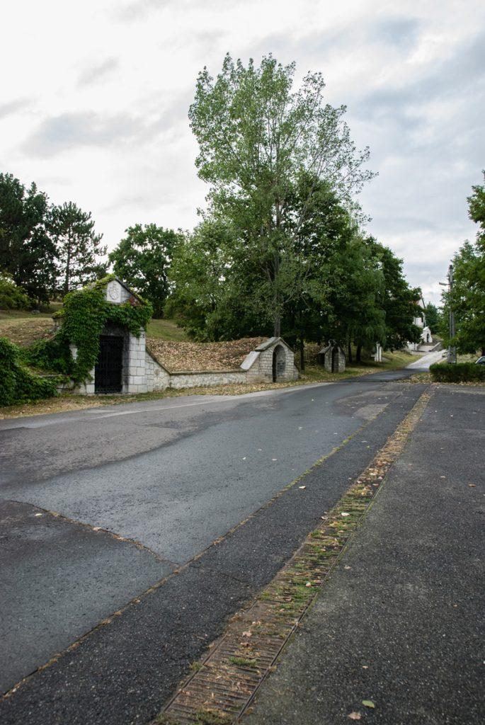Piwniczki winne w miejscowości Tolcva