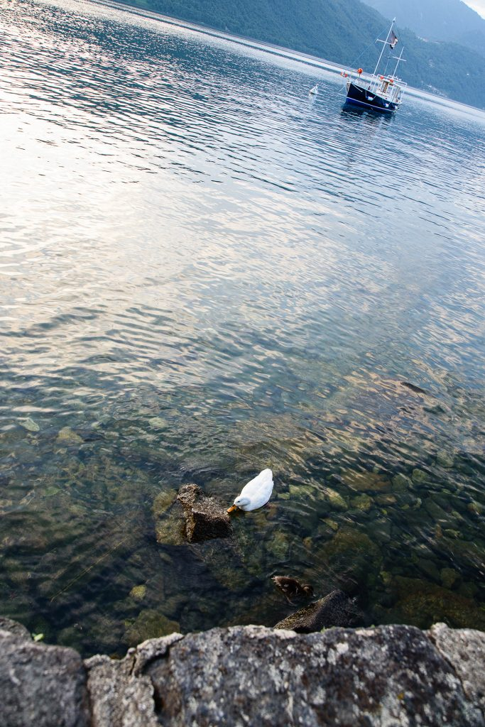 Spacer nad Lago di Orta