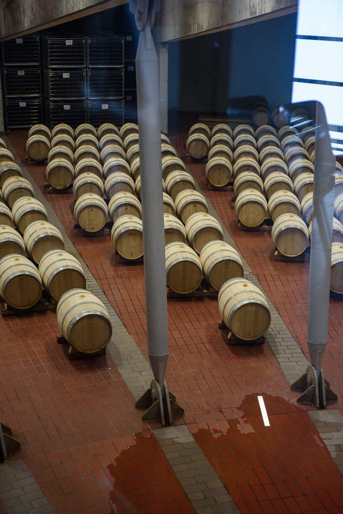 Monte delle Vigne - beczki z winem
