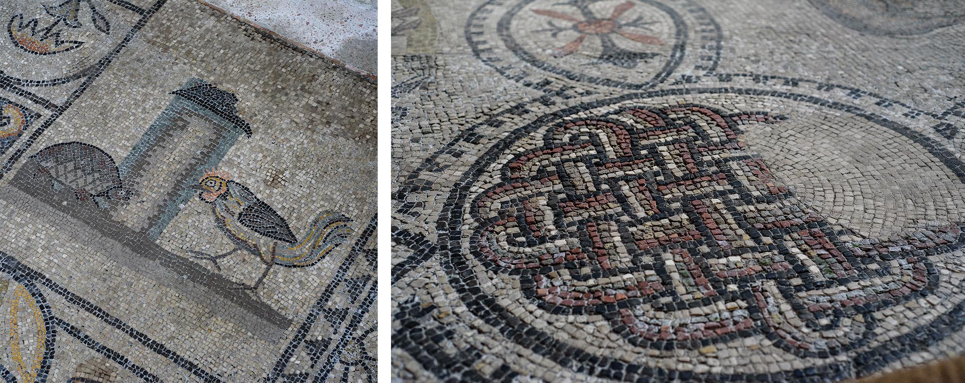 Bazylika w Aquileii - mozaika z IV wieku na podłodze