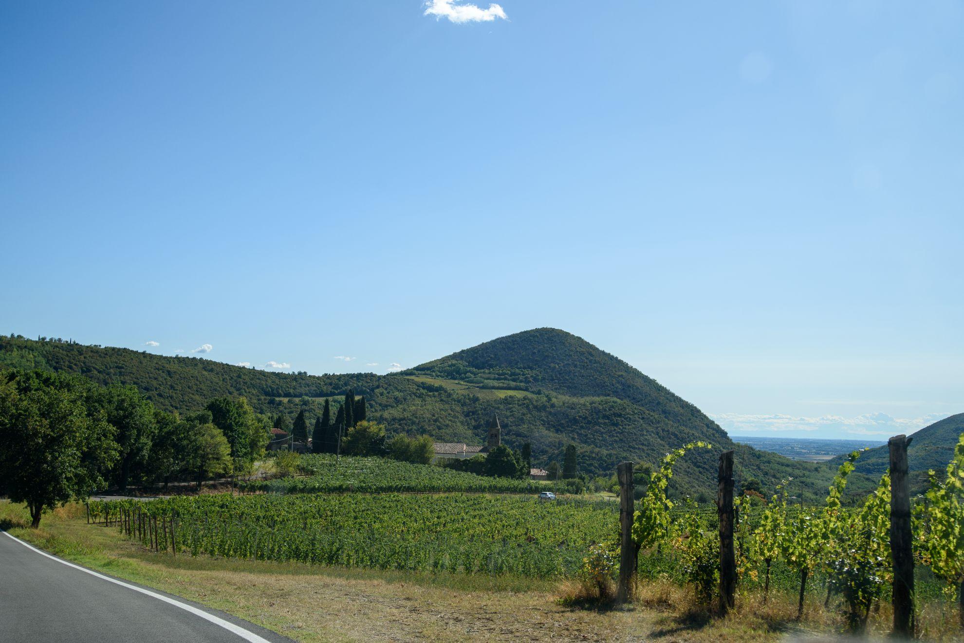 Wzgórza wulkaniczne Colli Euganei