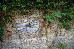 Gleba - Winnica Kmetija Štekar