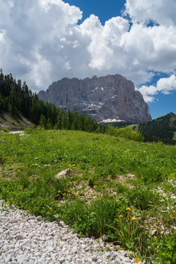 Widok na Dolomity