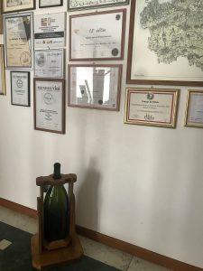 Drusian - dyplomy