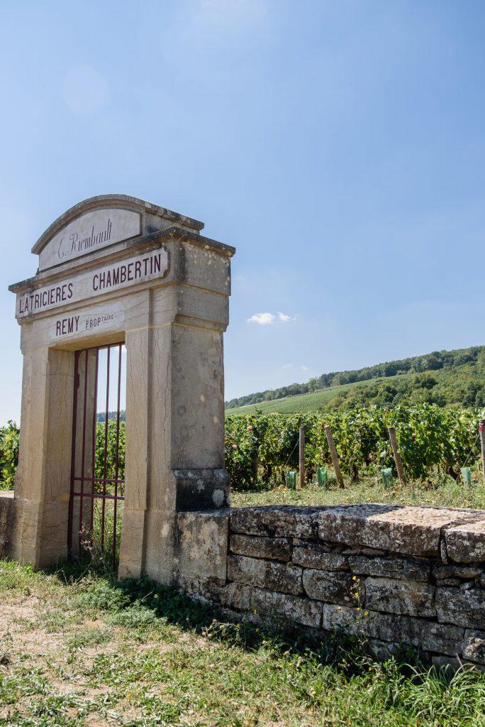 Domena Chantal Remy w apelacji Latricières-Chambertin